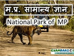 National Park of Madhya Pradesh