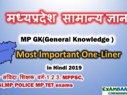mp gk 2019 in hindi