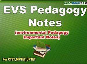 tet environment question in hindi Archives - EXAMBAAZ