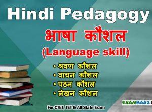 Hindi pedagogy Notes Archives - EXAMBAAZ