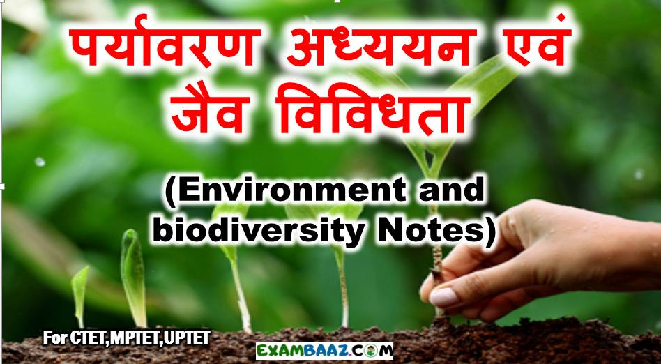 Environment and biodiversity Notes