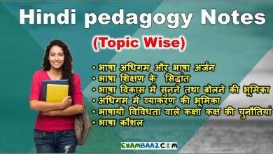 Hindi pedagogy Notes (Topic Wise Complete Notes) For CTET & All Teachers Exam