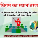 अधिगम का स्थानांतरण: Transfer of Learning In Hindi For CTET,UPTET,Bihar STET & TET Exams
