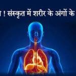Body Parts Name In Sanskrit For TET Exam   शरीर के अंगों के नाम संस्कृत में