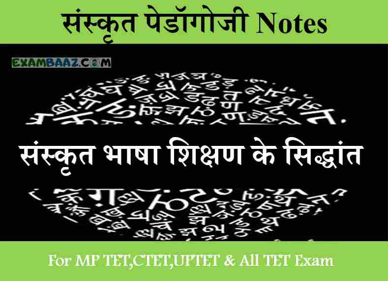 संस्कृत भाषा शिक्षण के सिद्धांत | संस्कृत पेडॉगोजी Notes