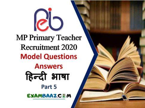 samvida shikshak varg 3 model paper in hindi