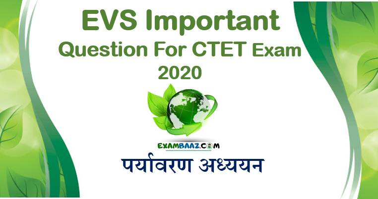 EVS Pedagogy MCQ for CTET Exam