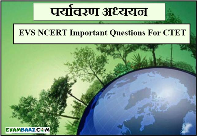 EVS NCERT Important Questions For CTET Exam