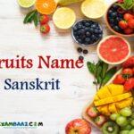 List of All Fruits Name In Sanskrit    संस्कृत में फलों के नाम