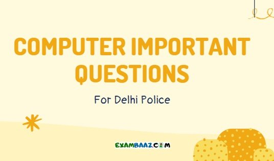 Delhi Police Computer Question