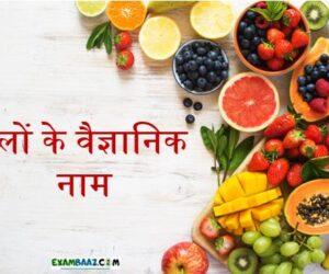 List of All Scientific Name of Fruits    फलों के वैज्ञानिक नाम