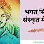 Essay on Bhagat Singh In Sanskrit