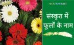 phulo ke name sanskrit me