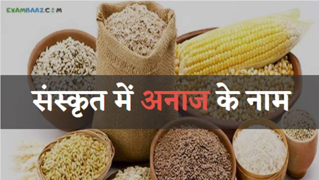 Grains Name In Sanskrit