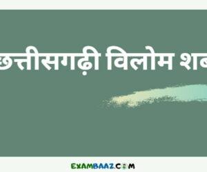 छत्तीसगढ़ी विलोम शब्द : Chhattisgarhi Vilom Shabd In Hindi