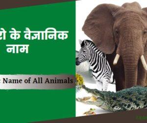 Scientific Name of All Animals In Hindi/English | जानवरो के वैज्ञानिक नाम