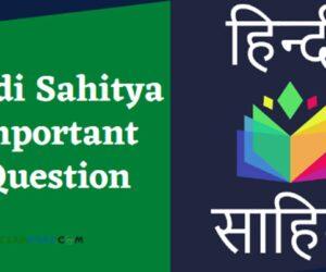 हिंदी साहित्य के 50 अति महत्वपूर्ण प्रश्न |Hindi Sahitya Ka Itihas Question Answer